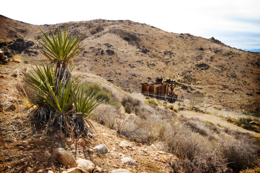 The Lost Horse Mine Trail in Joshua Tree National Park.