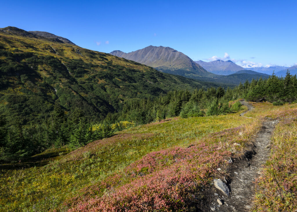 The Lost Lake Trail in Chugach National Forest.