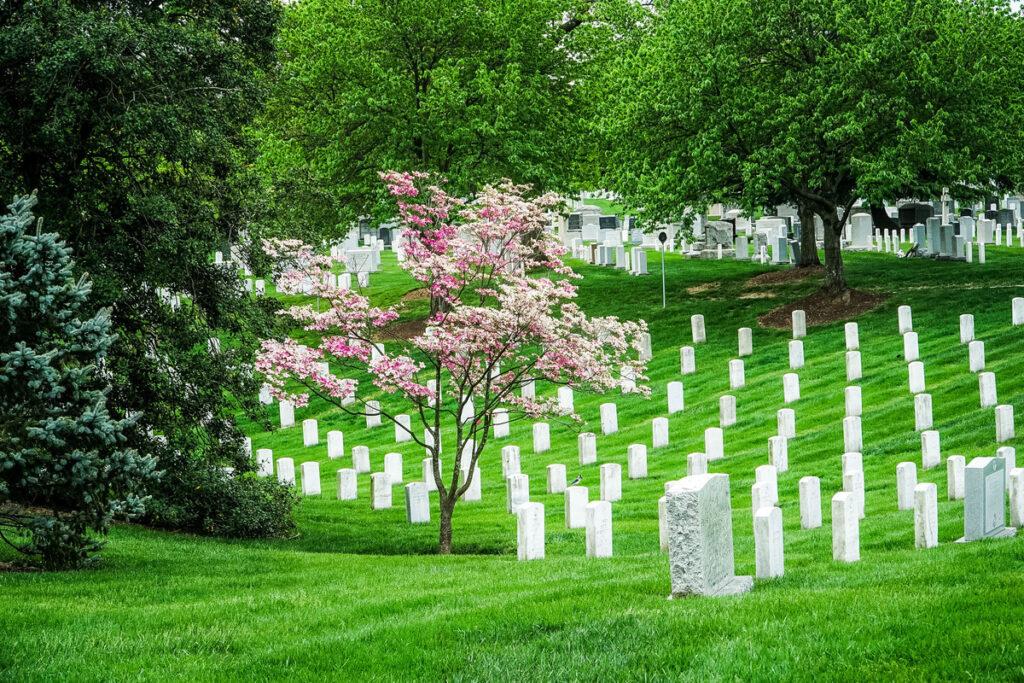The Memorial Arboretum at Arlington National Cemetery.