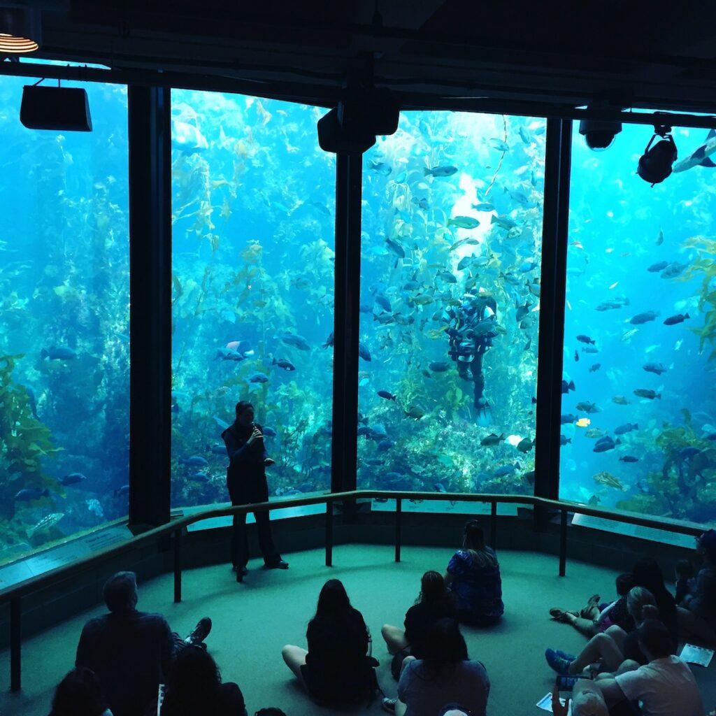 The Monterey Bay Aquarium in California.