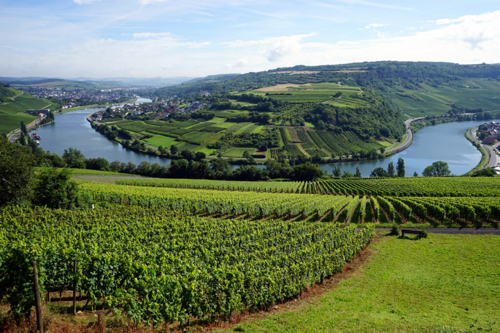 The Moselle Valley on the border between Luxembourg and Germany.