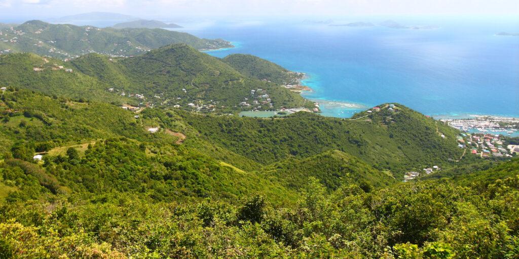 The Mount Sage National Park in Tortola.