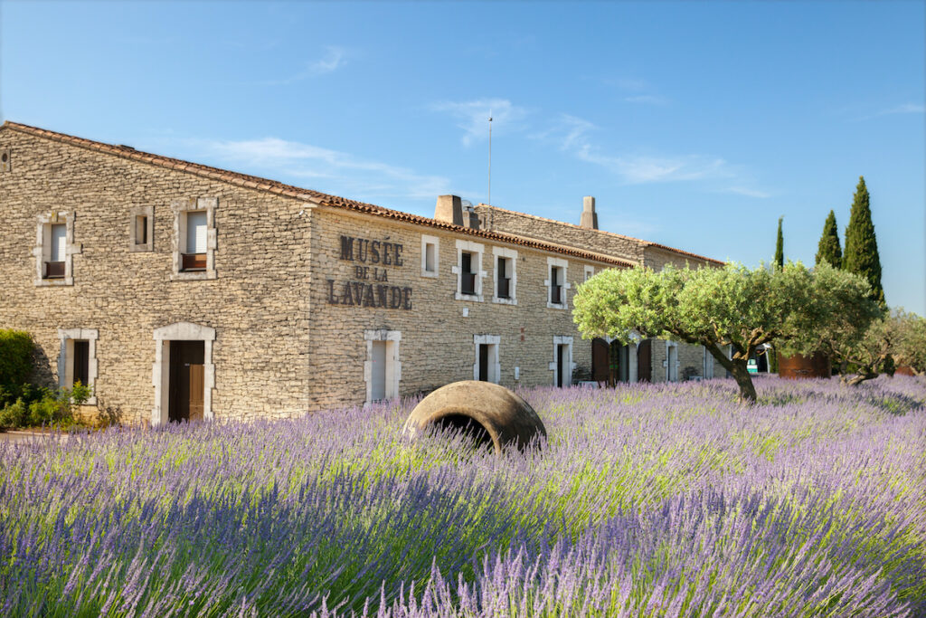 The Museum of Lavender in Luberon, France.