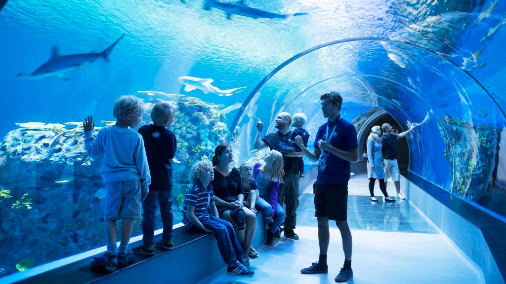 The National Aquarium in Copenhagen.