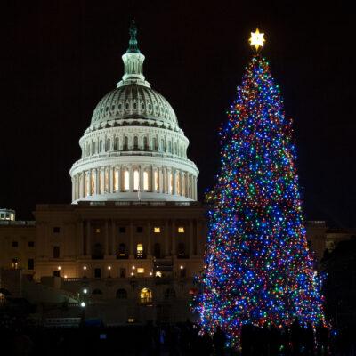 The National Christmas Tree in Washington, D.C.