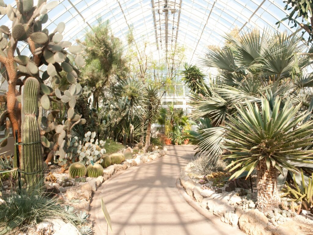 The New York Botanical Garden's Enid A. Haupt Conservatory.