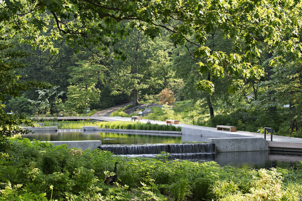 The New York Botanical Garden in the Bronx.