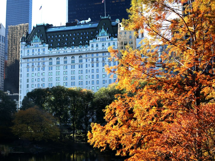 The New York Plaza Hotel seen from Central Park