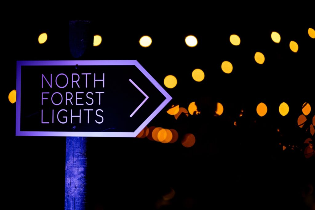 The North Forest Lights experience at Crystal Bridges.