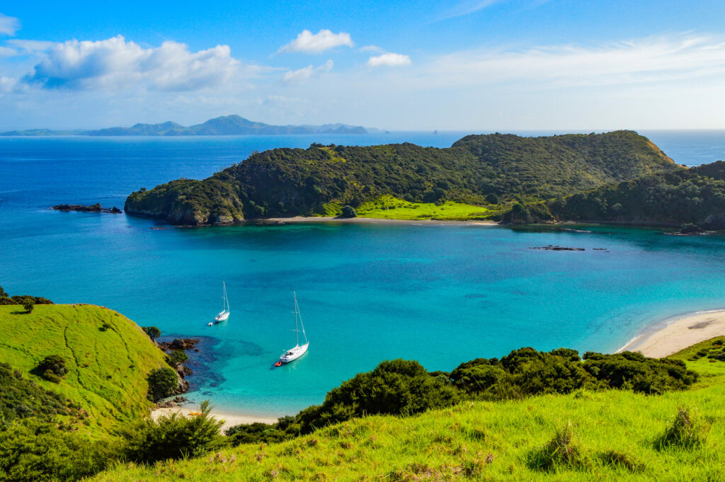 The Paihia township in New Zealand.