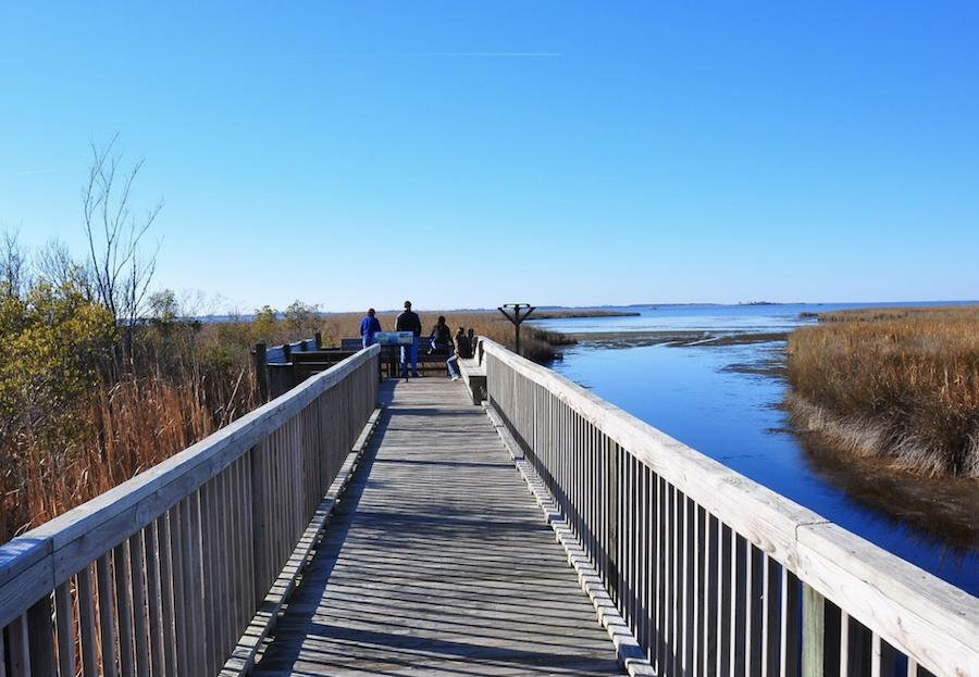 The Pine Island Audubon Center in North Carolina.