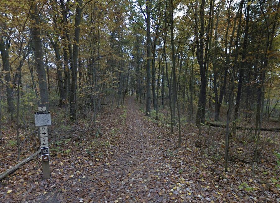 The Potawatomi Trail in Michigan's Pinckney Recreation Area.