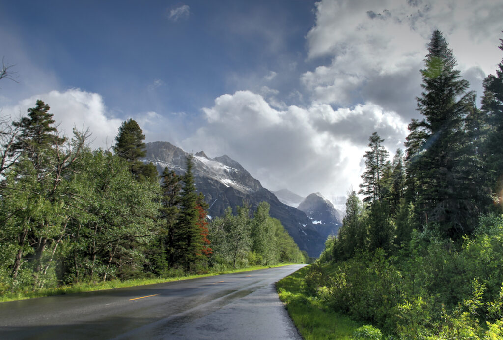 The road to Apgar Campground in Glacier National Park.