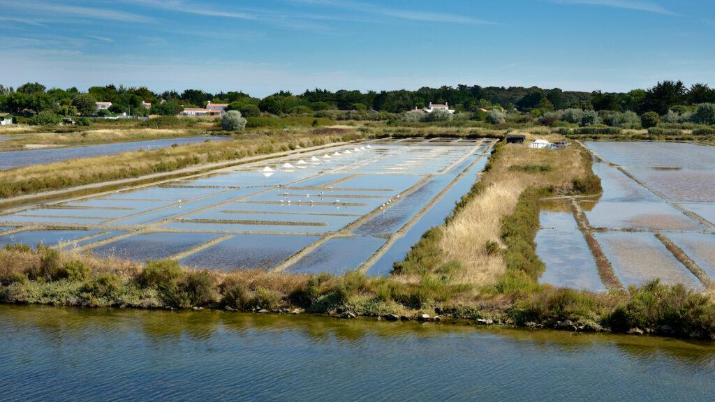 The Salt Marshes on Ile De Noirmoutier in France.