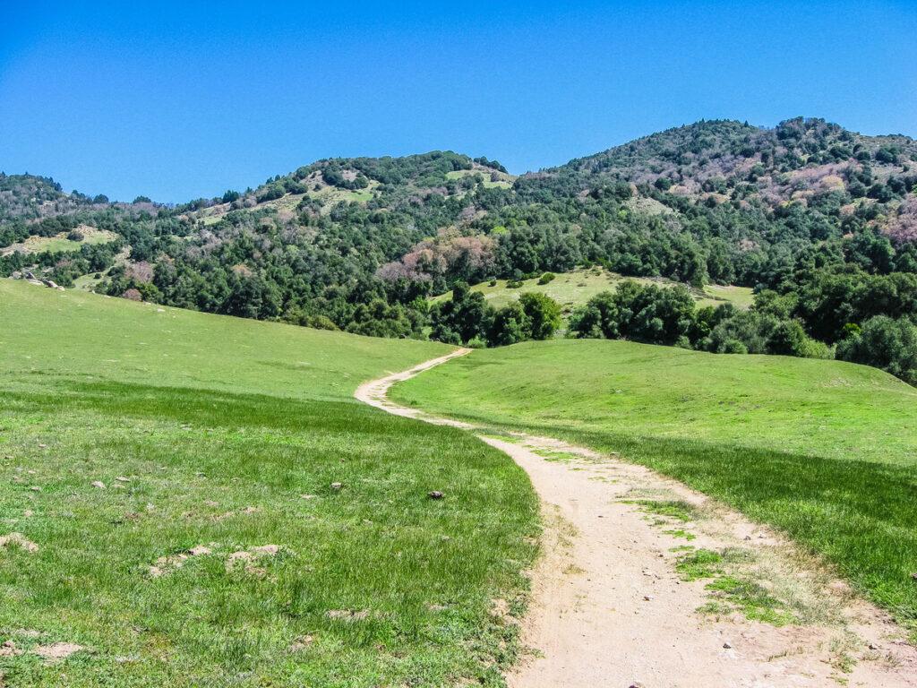 The Santa Ysabel Open Space Preserve near Julian, California.