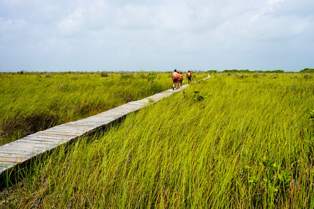 The Sian Ka'an Biosphere Reserve in Riviera Maya.