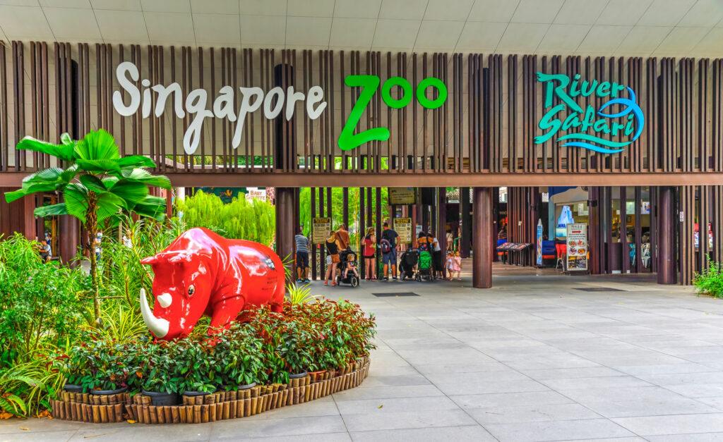 The Singapore Zoo.