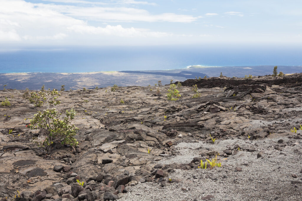 The site of the Mauna Ulu lava flow in Hawaii.