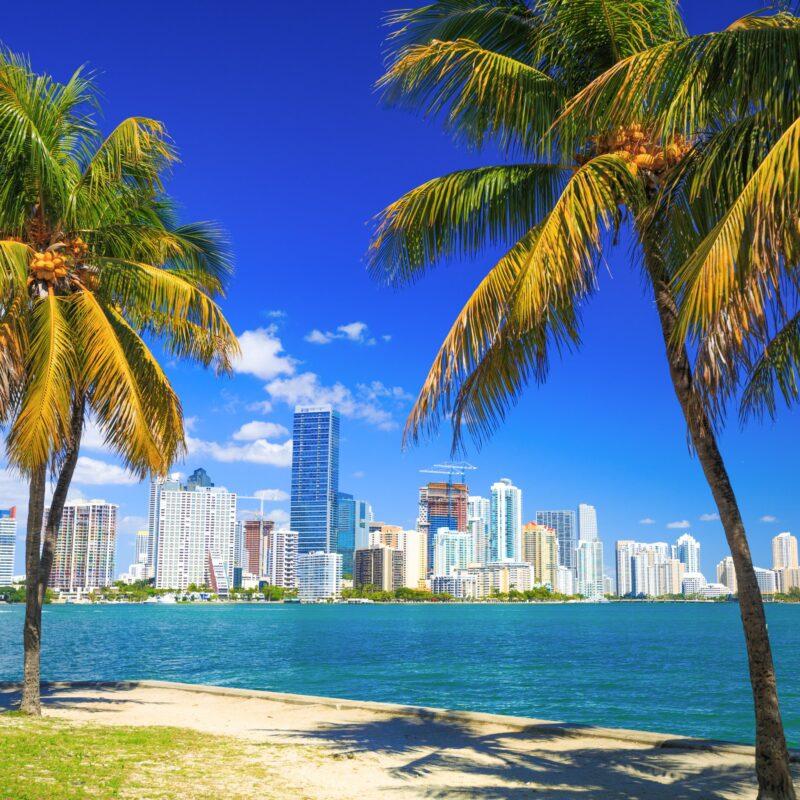 The skyline of Miami, Florida.