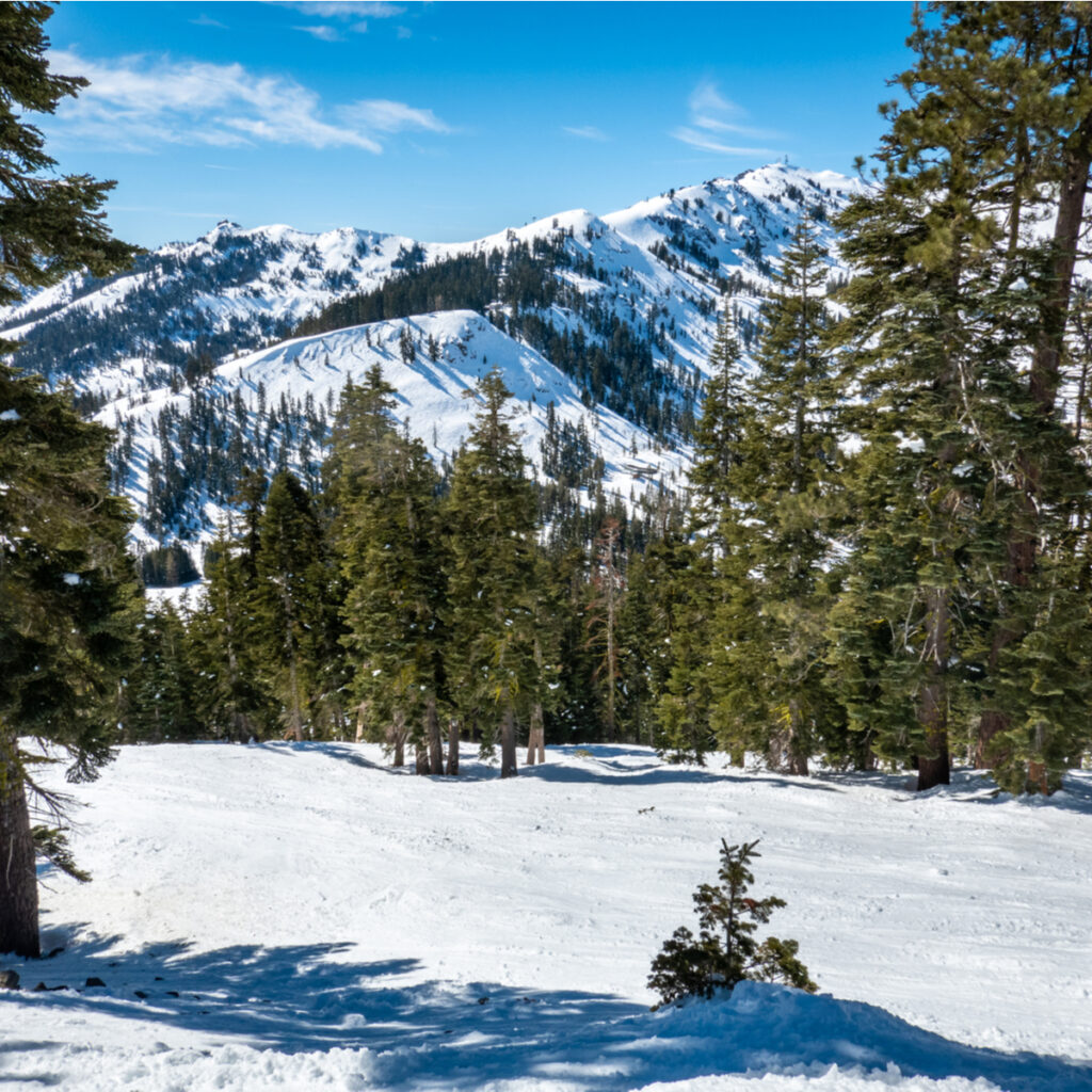 The slopes at Squaw Valley Alpine Meadows in Truckee.