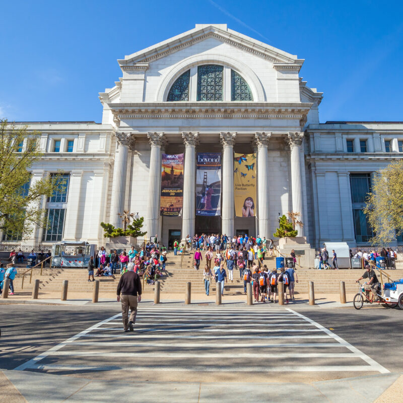 The Smithsonian National Museum of Natural History.