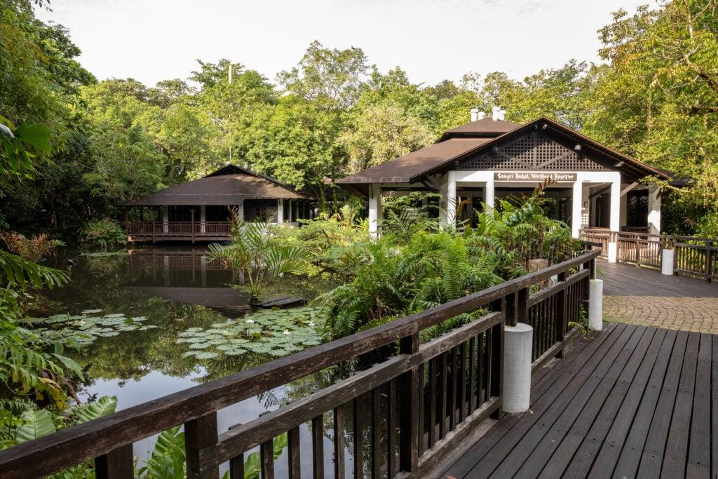 The Sungei Buloh Wetland Nature Reserve in Singapore.