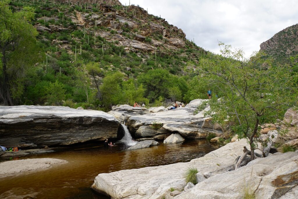 The swimming hole at Sabino Canyon in Arizona.