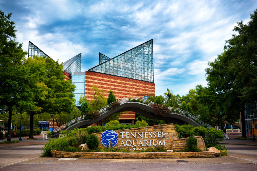 The Tennessee Aquarium in Chattanooga.