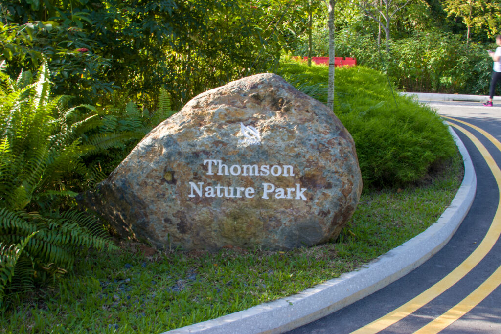 The Thomson Nature Park in Singapore.