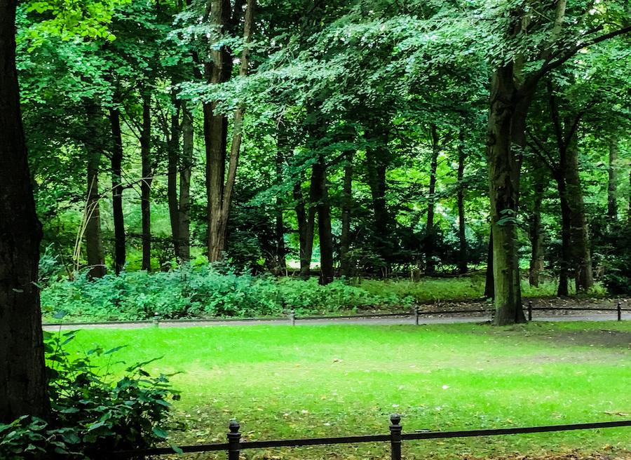 The Tiergarten in central Berlin.