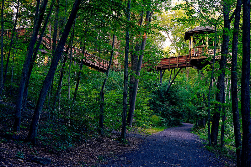 The treehouse in Nay Aug Park.