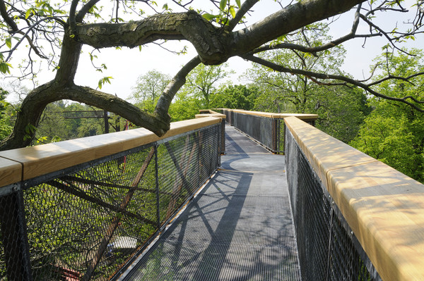 The Treetop Walkway at Kew Gardens.