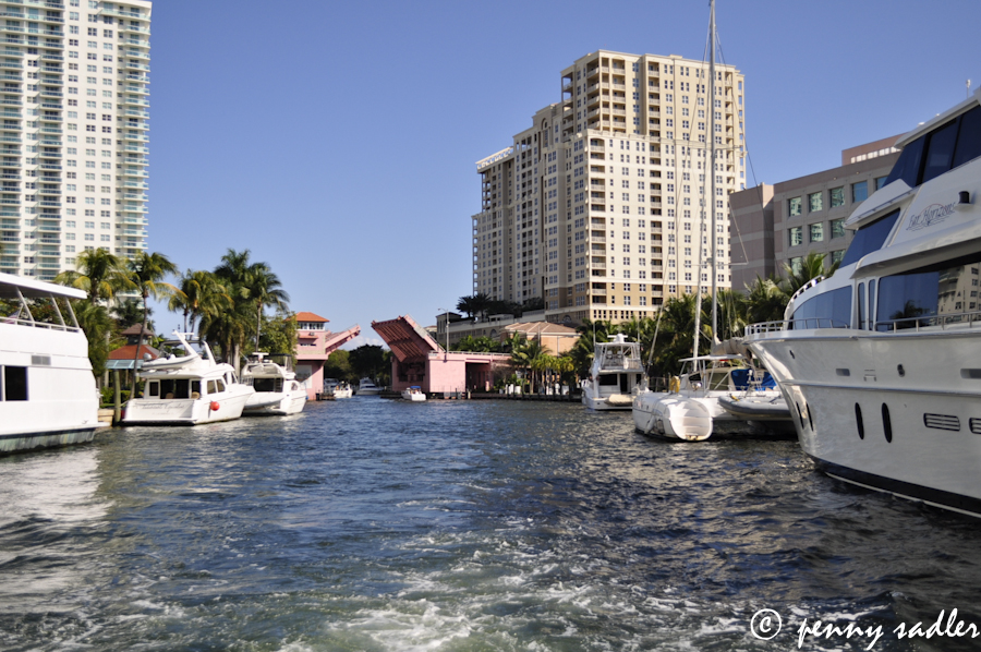 The view from a water taxi.