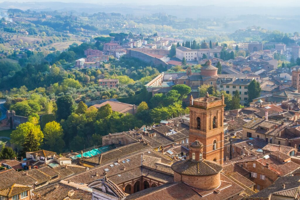 The view of Siena from the Torre del Mangia.