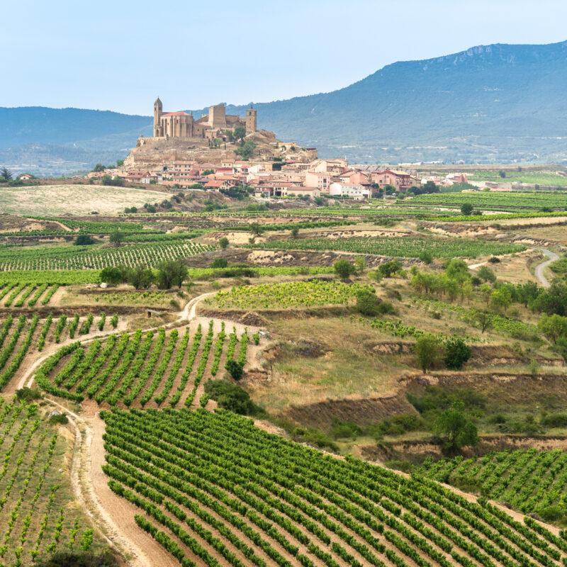 The village of San Vicente de la Sonsierra in Spain's Rioja wine region.