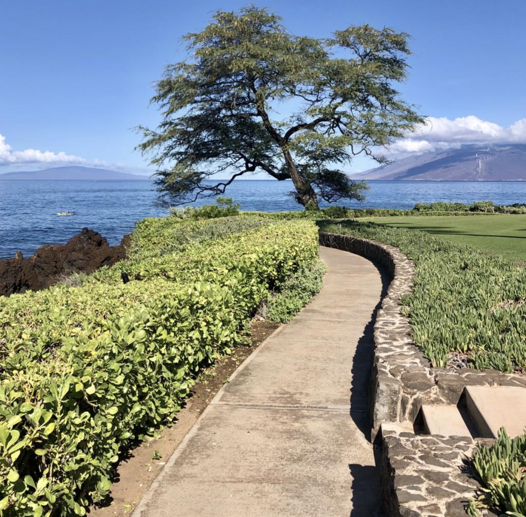 The Wailea Oceanfront Boardwalk Trail in Hawaii.