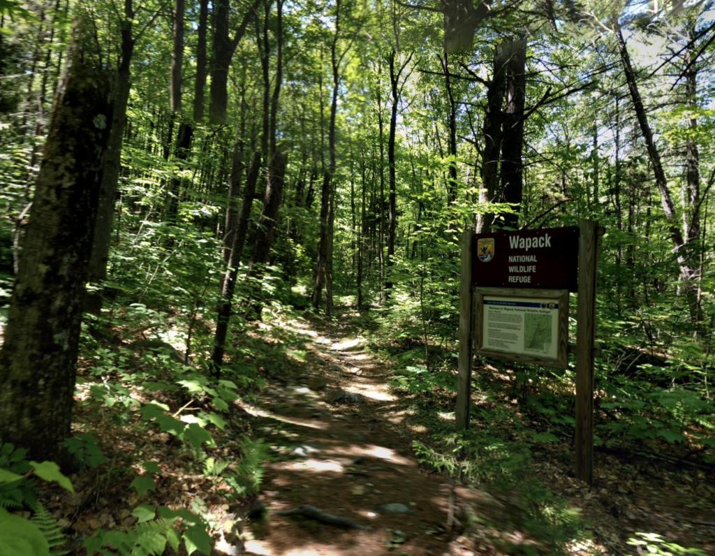 The Wapack Trail through the Wapack National Wildlife Refuge.