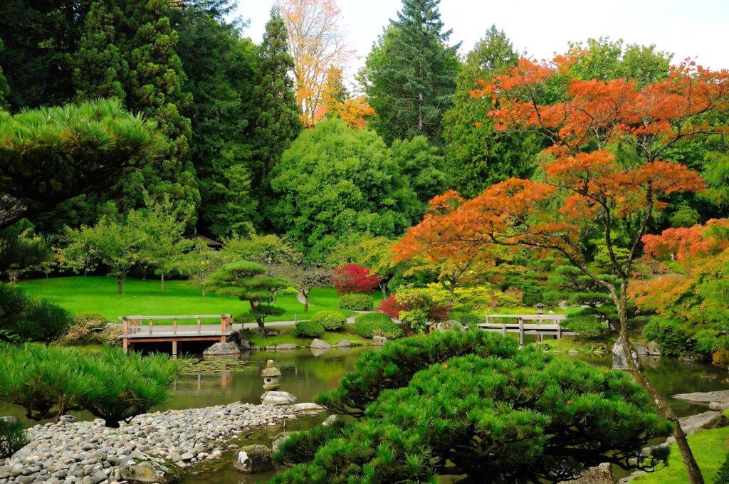 The Washington Park Arboretum in Seattle, Washington
