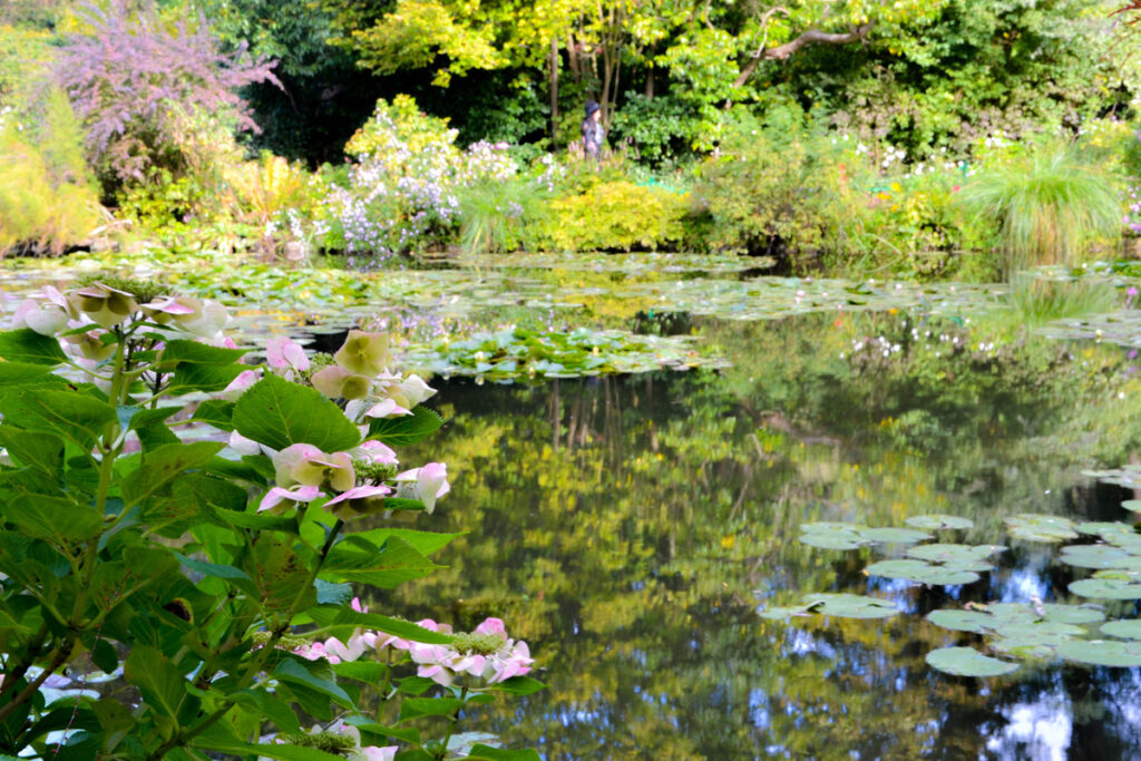 The water lily pond in Monet's Gardens.