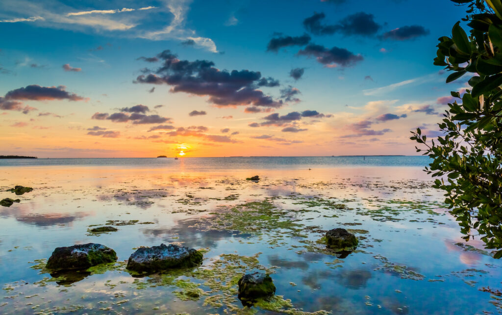 The waters off the coast of Key Largo, Florida.