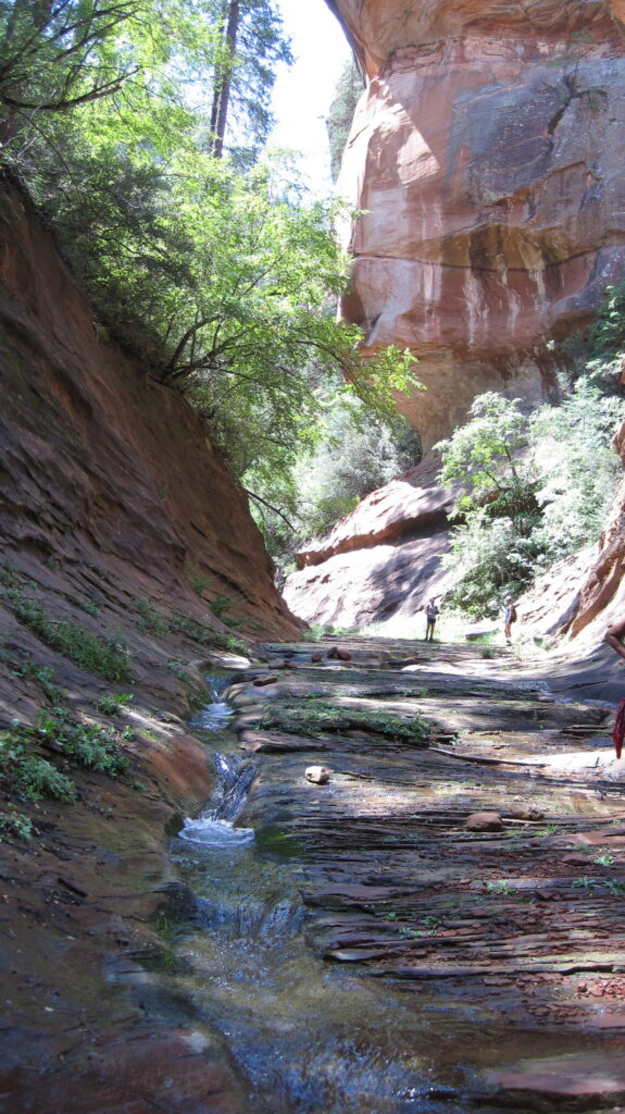The West Fork Trail at Arizona's Oak Creek Canyon.