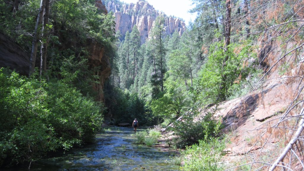 The West Fork Trail in Sedona.