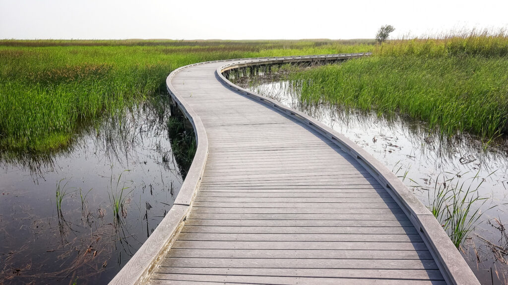 The Wetland Walkway trail at Sabine National Wildlife Refuge.