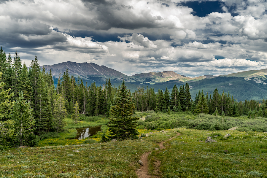 The Wheeler Peak Summit Trail in Great Basin National Park.