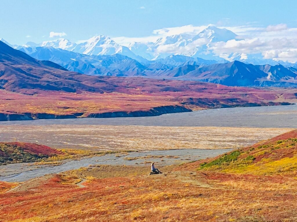The writer admiring the view in Denali State Park.