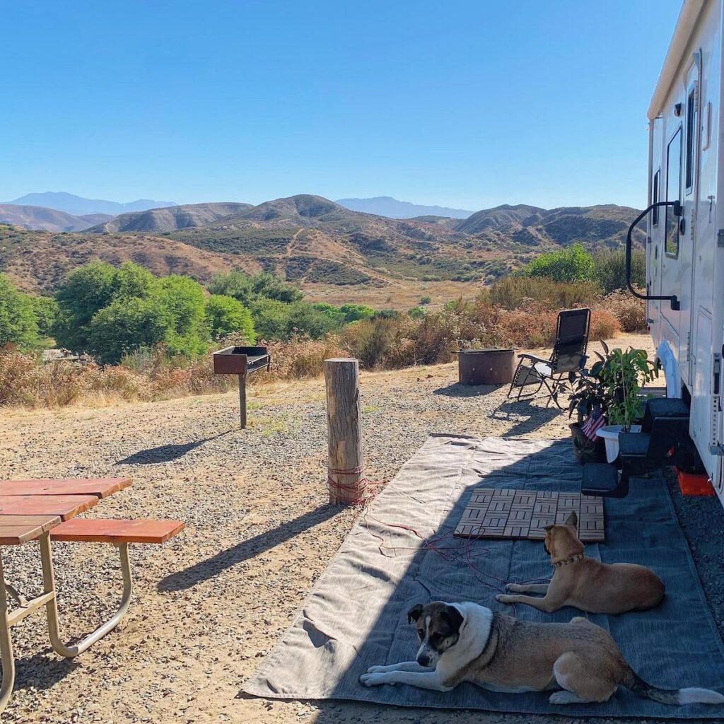 The writer and her dogs at an RV campsite.