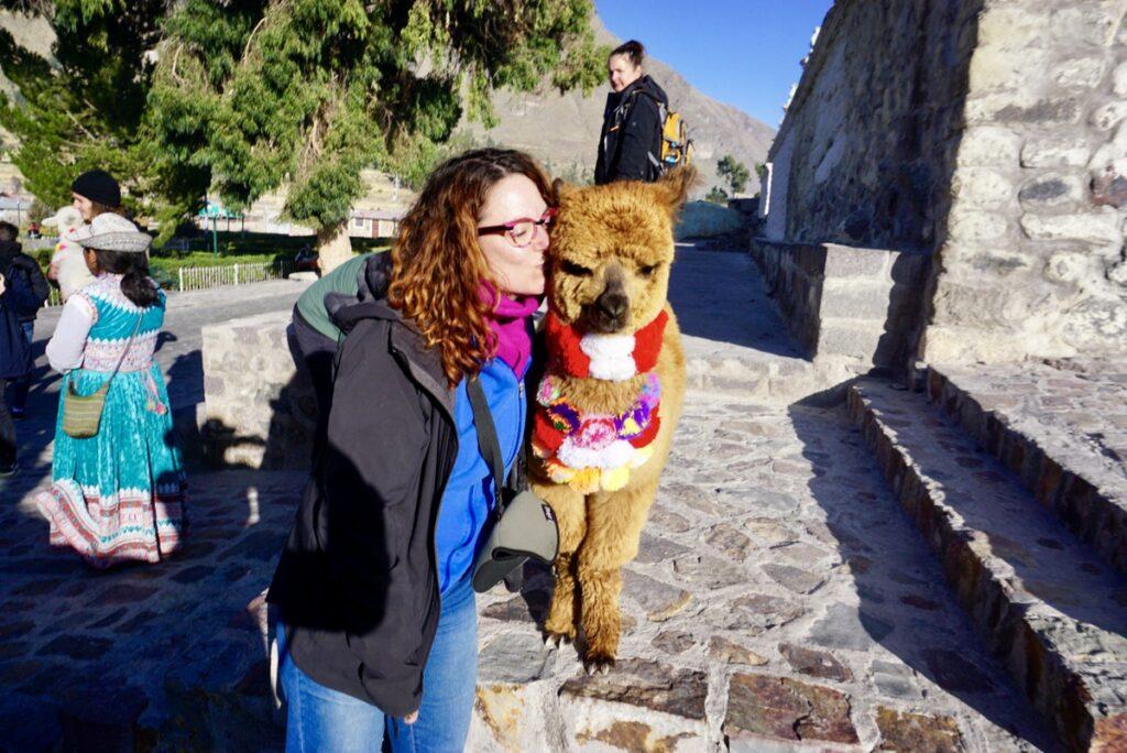 The writer kissing a llama.