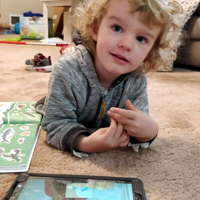 The writer's grandchild using a tablet.