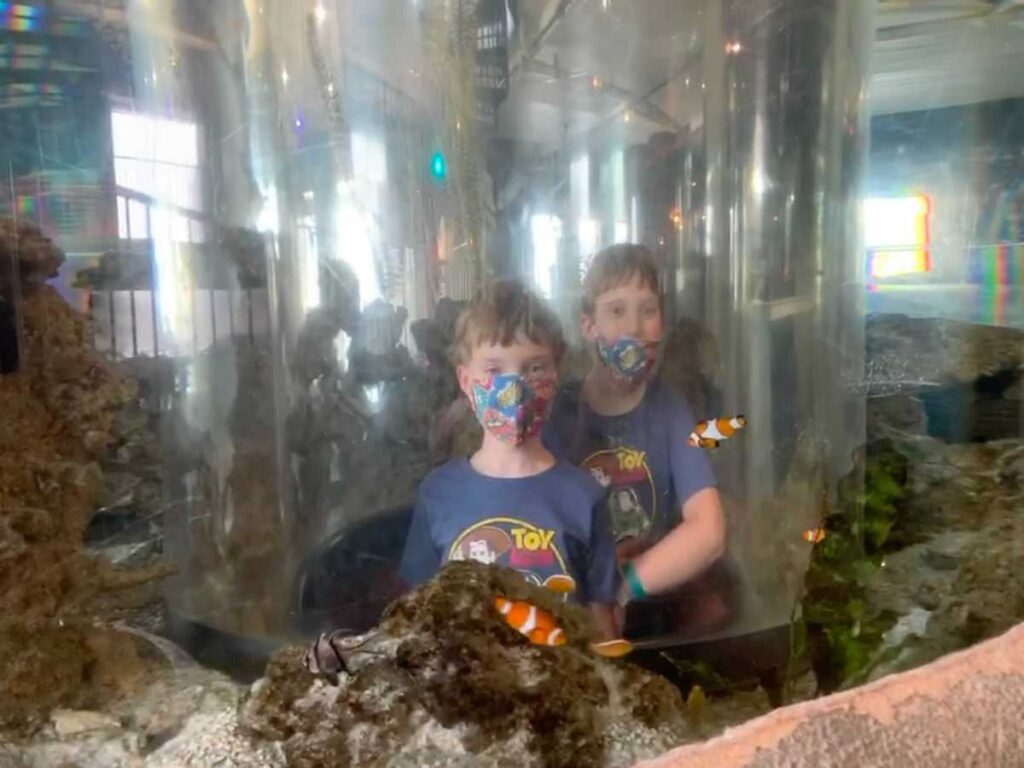 The writer's kids at the aquarium in the City Museum.