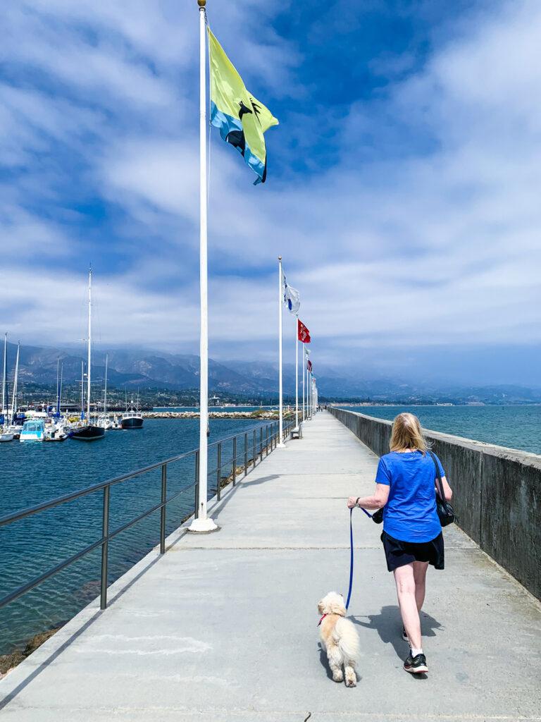 The writer walking her dog along the breakwater.